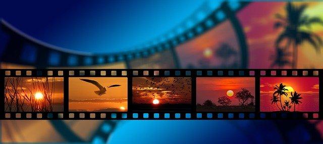 Cine Medioambiental: 100 años de naturaleza y ficción